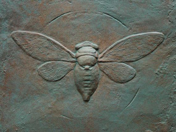 Cicada Bas-relief